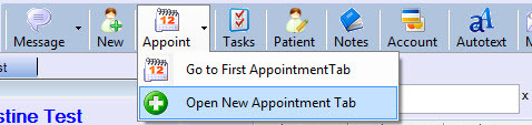 Appointment book 4